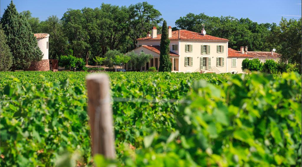 viticulture, château réal d'or, vin